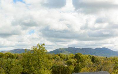Our Favorite Asheville Trails